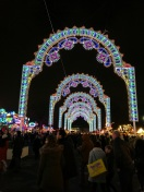 Winter Wonderland Lights