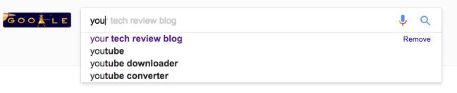 Google Autocomplete Function